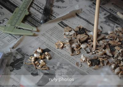 ruly photos hommes de flores